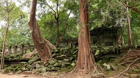Templo Beng Mealea4
