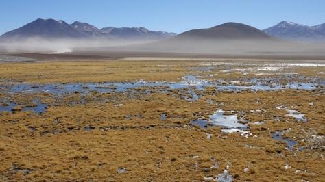 1d Atacama