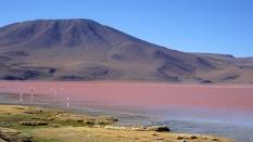 93c laguna colorada