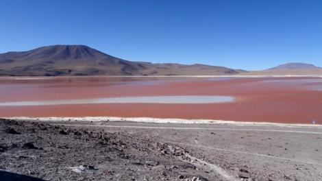 93f laguna colorada
