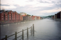 Trondheim 6